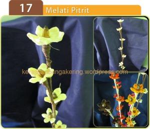 17_Melati Pitrit